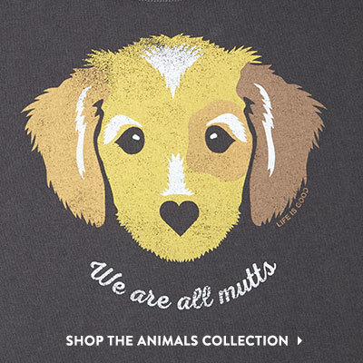 Shop the New Animals Collection